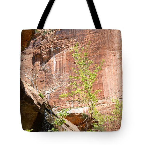 Red Rock With Waterfall Tote Bag