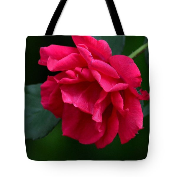 Red Rose 2013 Tote Bag by Maria Urso