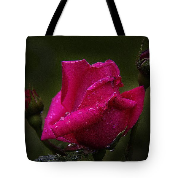 Red Rose Bud Tote Bag