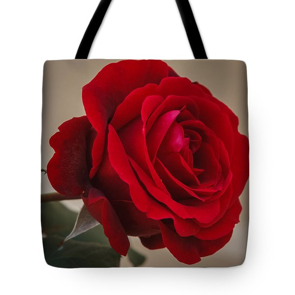 Red Rose Tote Bag by Jane Luxton