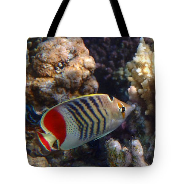 Red Sea Beauty 2 Tote Bag