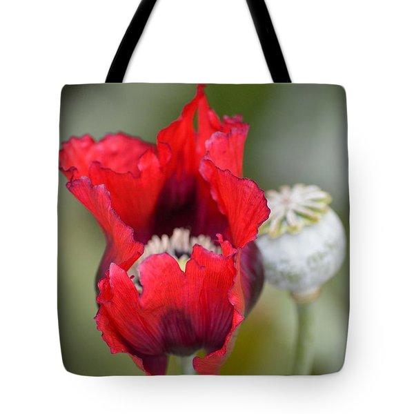 Red Sensation Tote Bag by Sonali Gangane