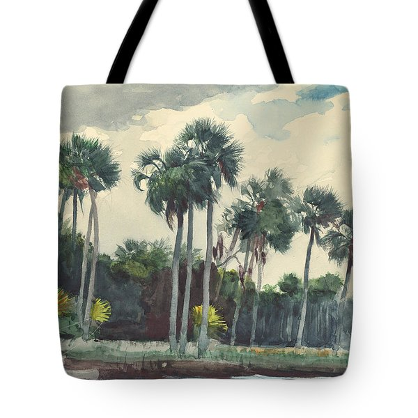 Red Shirt Homosassa Florida  Tote Bag by Winslow Homer