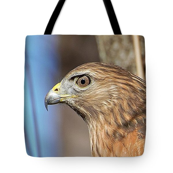 Tote Bag featuring the photograph Red-shouldered Hawk by Ludwig Keck