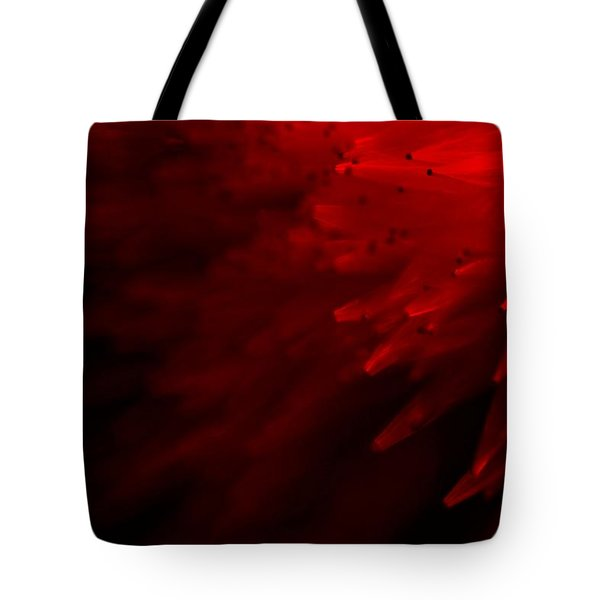 Red Skies Tote Bag by Dazzle Zazz
