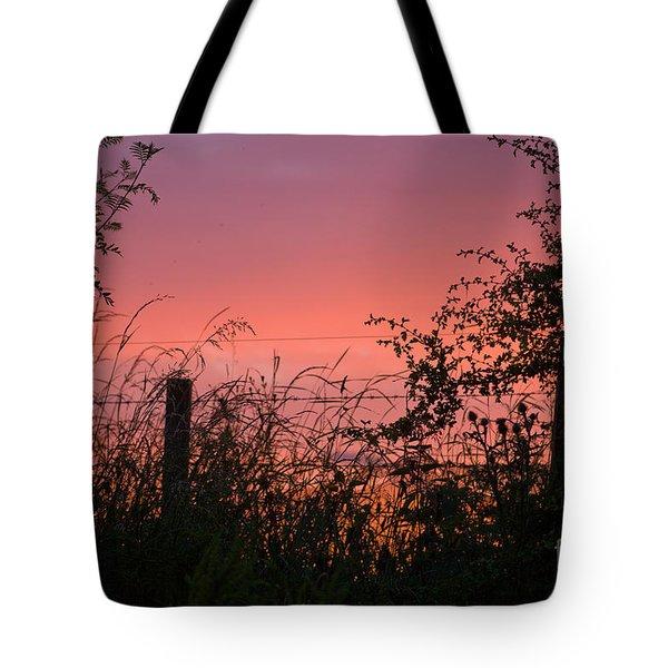 Red Sky At Night Tote Bag by Liz  Alderdice