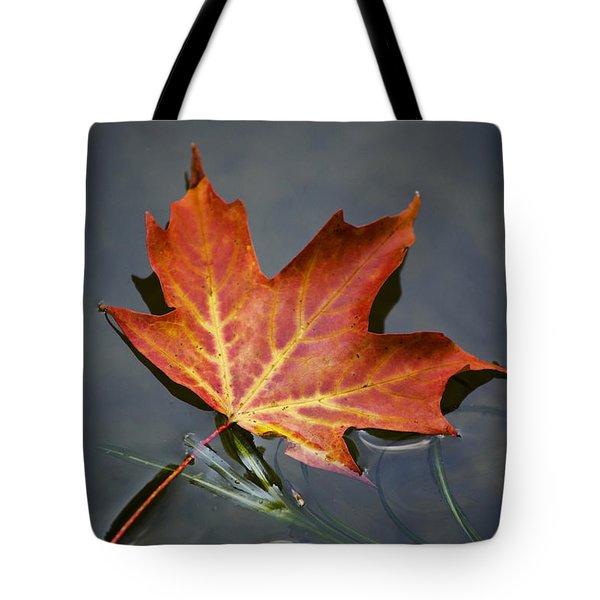Red Sugar Maple Leaf Tote Bag by Christina Rollo