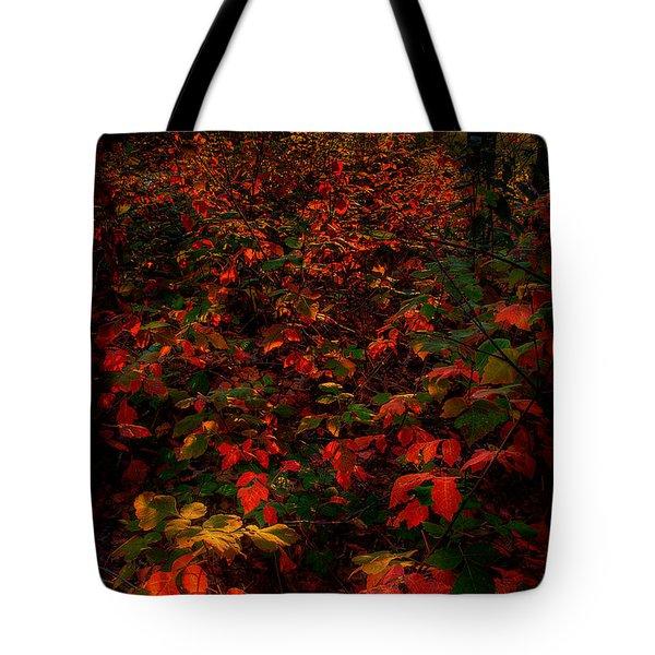 Red Sumac Tote Bag
