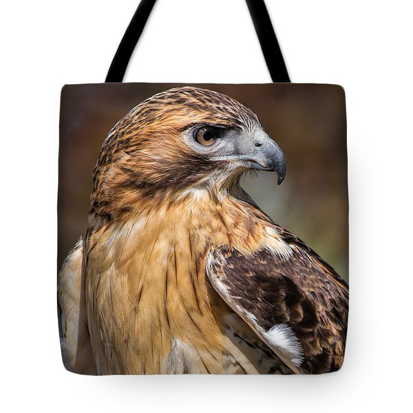 Red Tail Hawk Tote Bag by Dale Kincaid