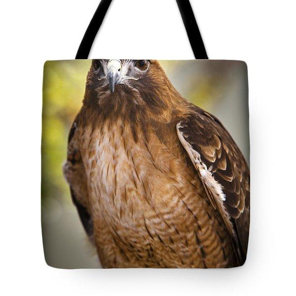 Eyes Of The Raptor Tote Bag