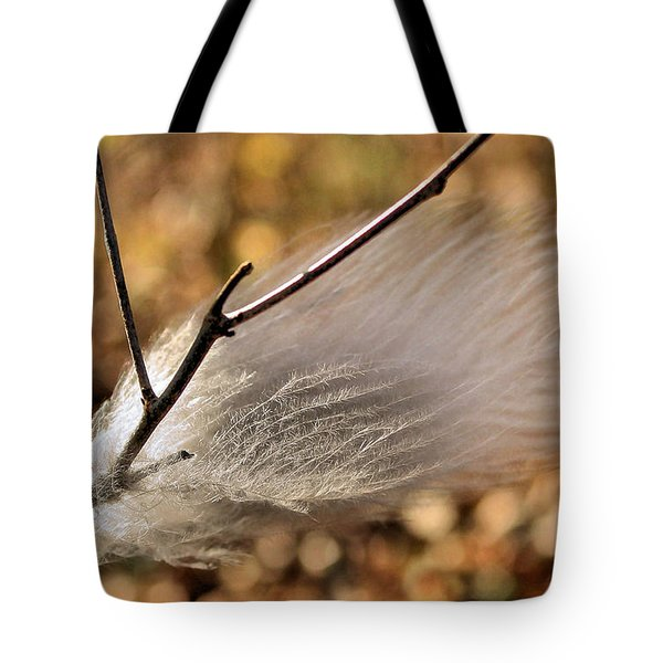 Red Tail Hawk Feather Tote Bag by Kristin Elmquist