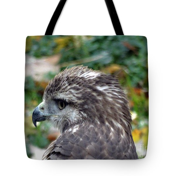 Red Tail Hawk Head Shot Tote Bag