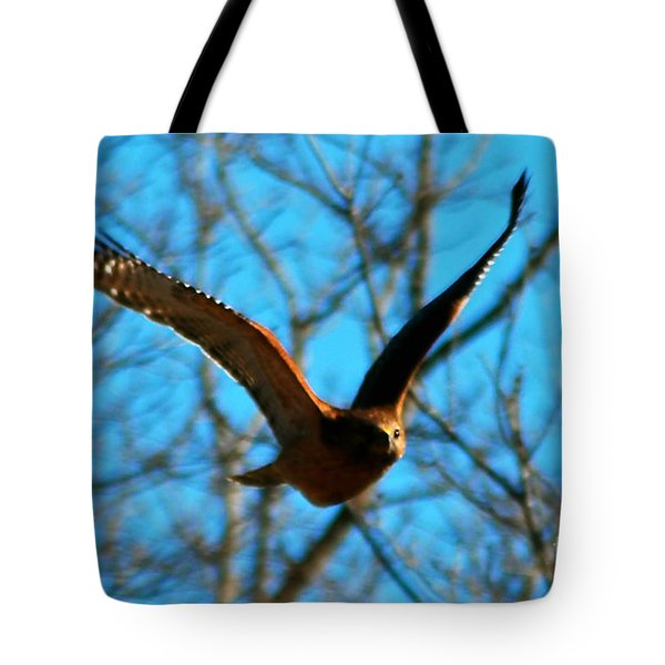 Tote Bag featuring the photograph Red Tail Hawk In Flight by Peggy Franz