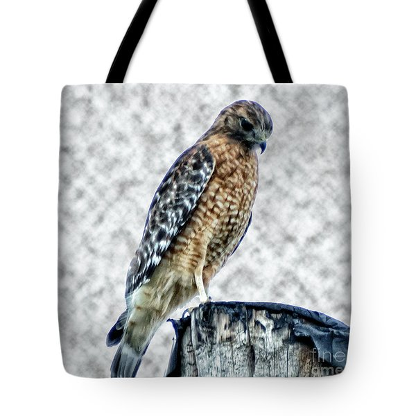 Red Tail Hawk Looking Down Tote Bag