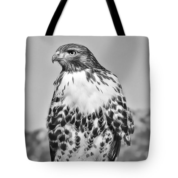 Red Tail Hawk Youth Black And White Tote Bag