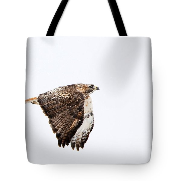 Red Tail In Flight Tote Bag