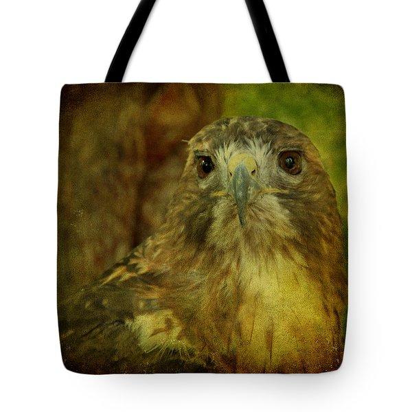 Red-tailed Hawk II Tote Bag by Sandy Keeton