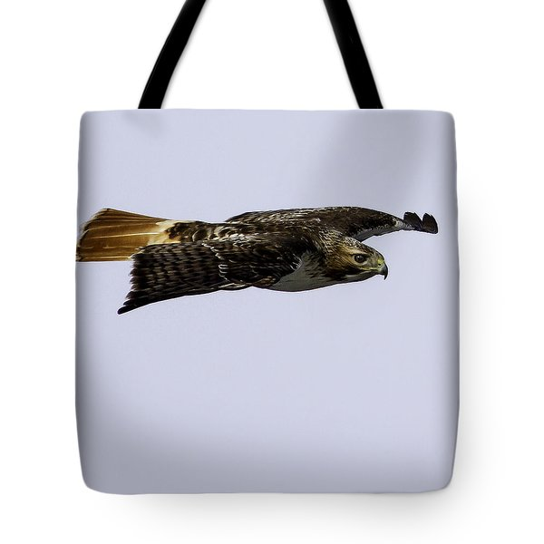 Red-tailed Hawk In Flight 2 Tote Bag