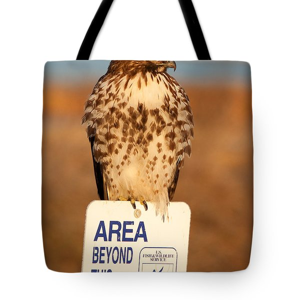 Red Tailed Hawk Lower Klamath National Wildlife Refuge Northern California Tote Bag