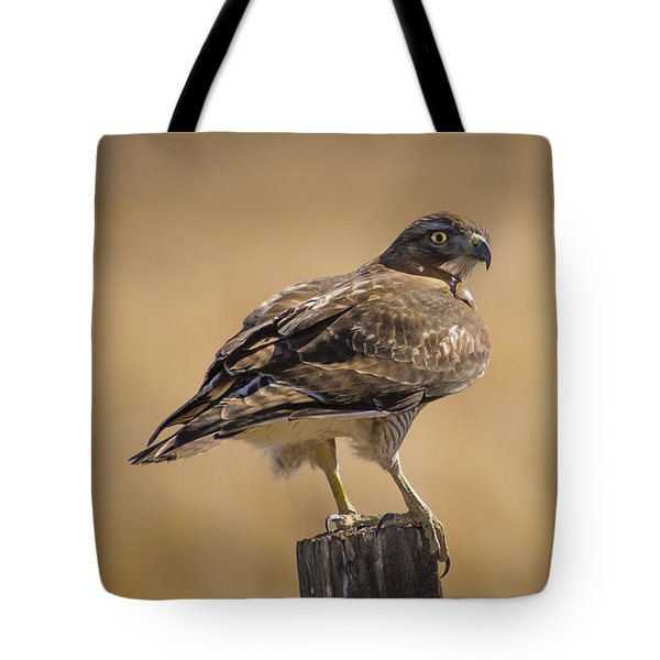Tote Bag featuring the photograph Red Tailed Hawk Watching by Janis Knight