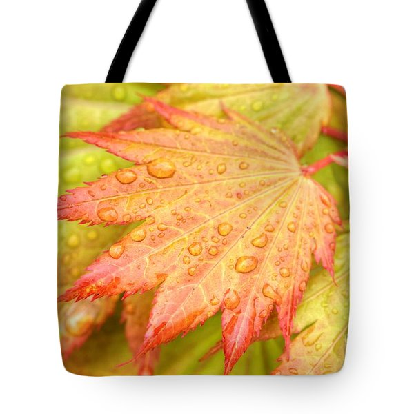 Red Tip Leaf Tote Bag
