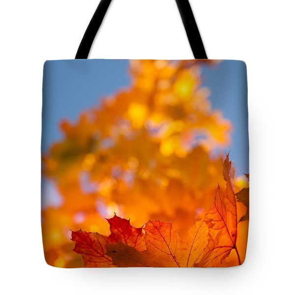 Tote Bag featuring the photograph Red Tipped Gold by Jeff Folger