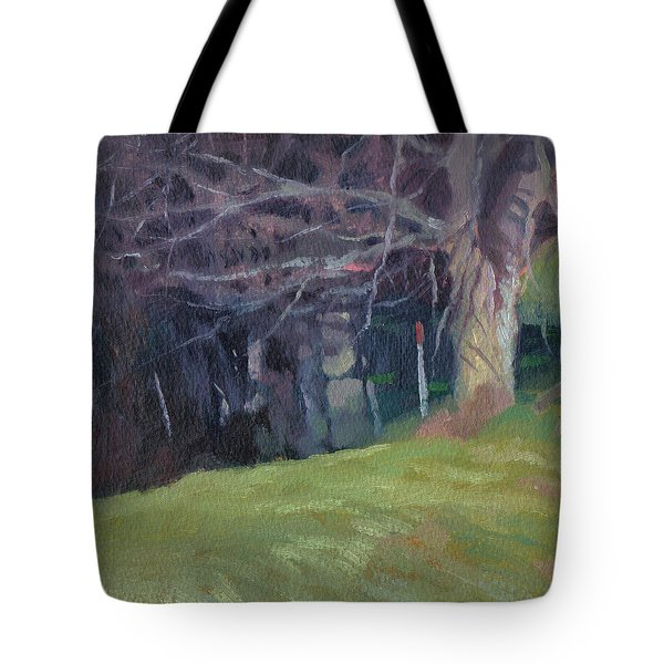 Red Top Fence Post Tote Bag by John L Campbell