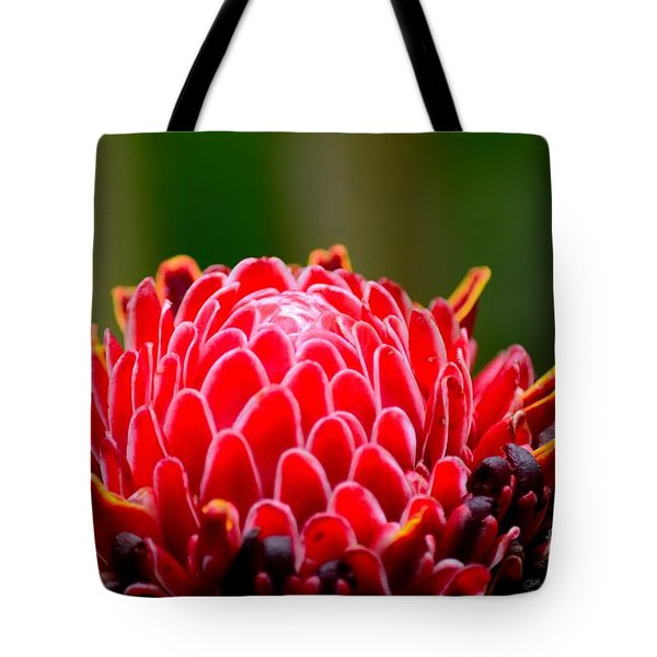 Red Torch Ginger Flower Head From Tropics Singapore Tote Bag