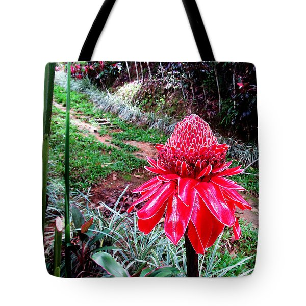 Red Torch Ginger Flower Two Tote Bag by Tina M Wenger