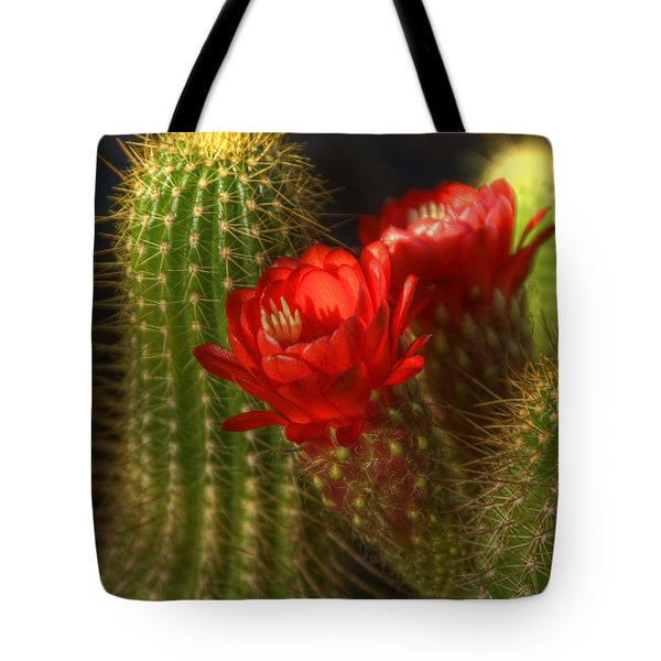 Red Torch II  Tote Bag by Saija  Lehtonen