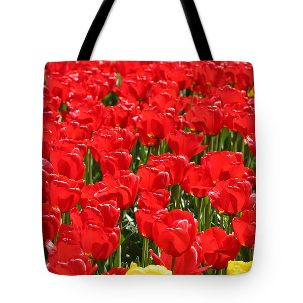 Red Tulip Field Tote Bag by Tap On Photo