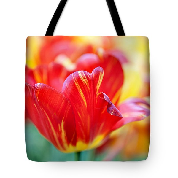 Red Tulip. The Tulips Of Holland Tote Bag