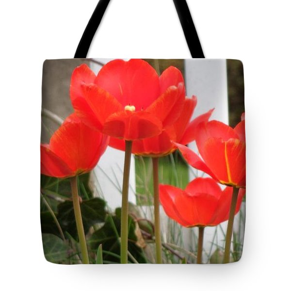 Red Tulips At Fence Tote Bag by Christina Verdgeline