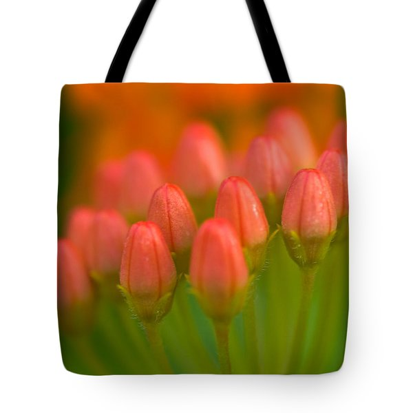 Red Tulips Tote Bag by Sebastian Musial