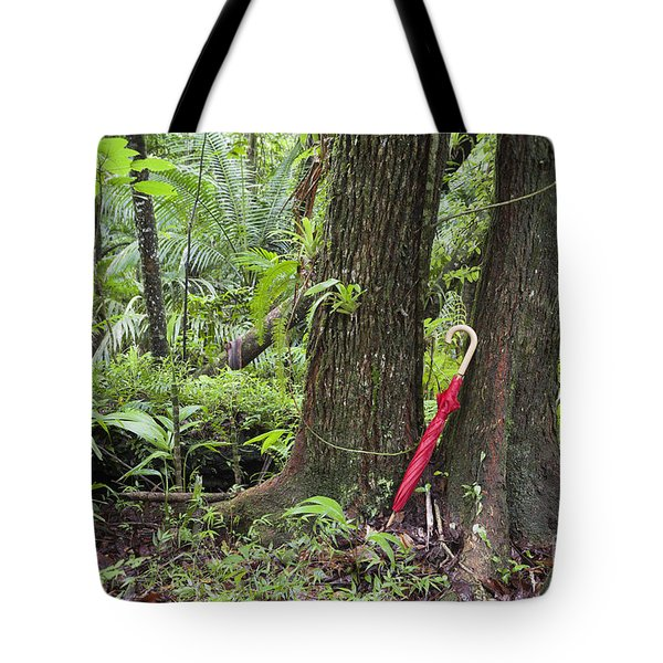 Tote Bag featuring the photograph Red Umbrella Leaning Against Tree In Rainforest by Bryan Mullennix