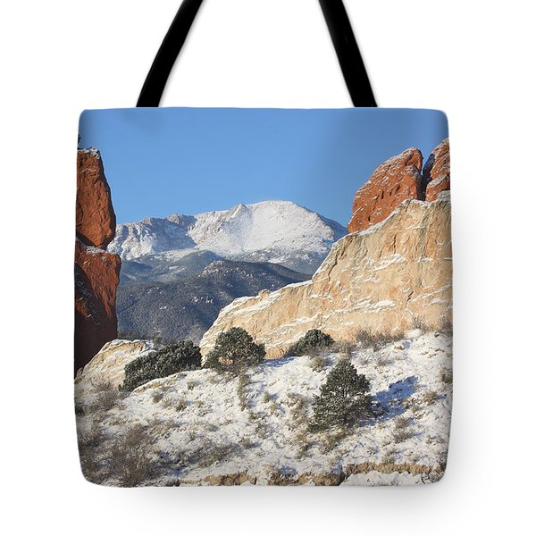 Red White And Blue Tote Bag by Eric Glaser