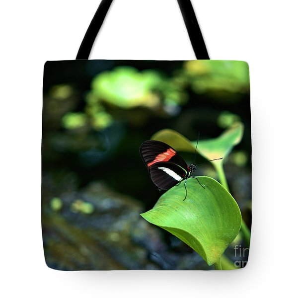 Red White Black Butterfly Tote Bag