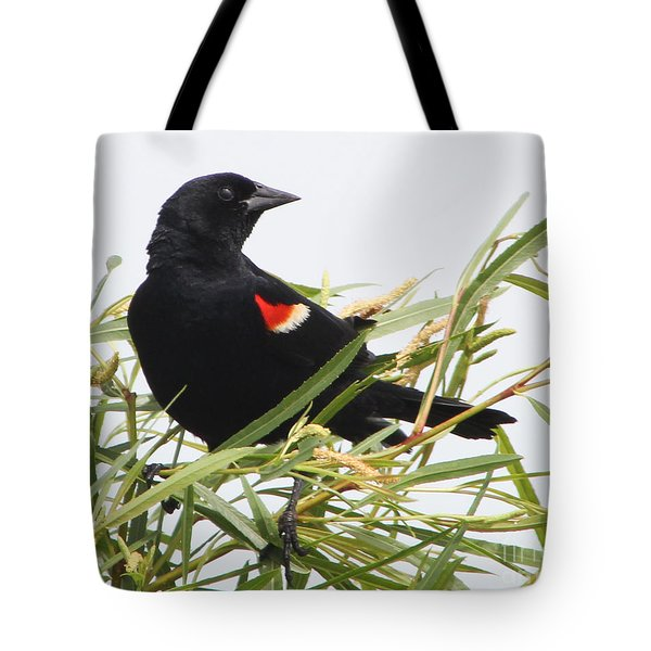 Red-winged Beauty Tote Bag