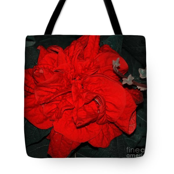 Red Winter Rose Tote Bag by Kathleen Struckle