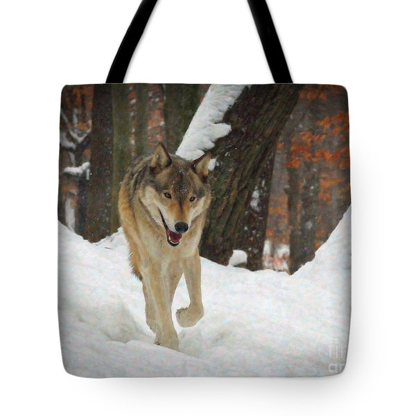 Tote Bag featuring the digital art Red Wolf On A Winter Hunt by Lianne Schneider