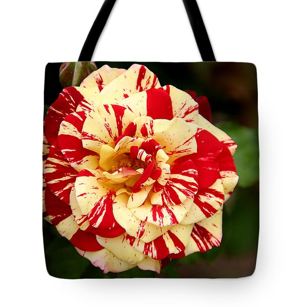 Red Yellow Rose Tote Bag by Christine Till