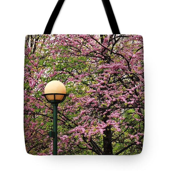 Redbud And Lamp Tote Bag