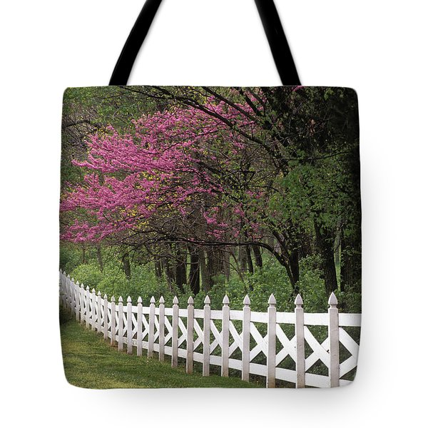 Redbud - Fs000814 Tote Bag by Daniel Dempster