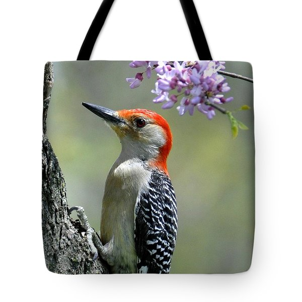 Redbud With Woodpecker Tote Bag