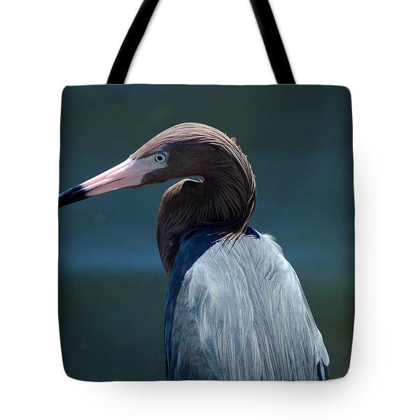 Reddish Egret 3 Tote Bag