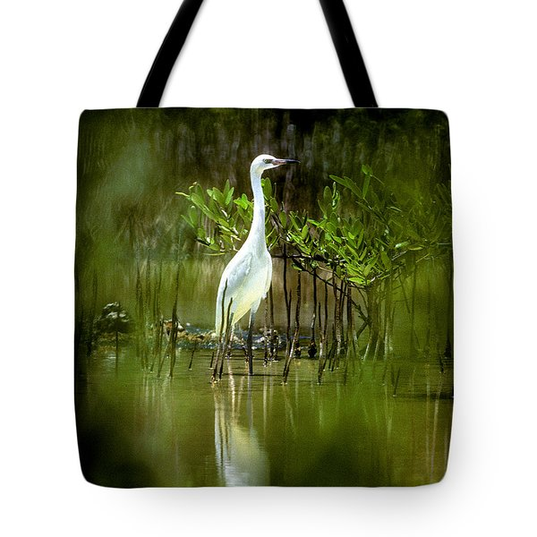 Tote Bag featuring the photograph Reddish Egret 9c by Gerry Gantt