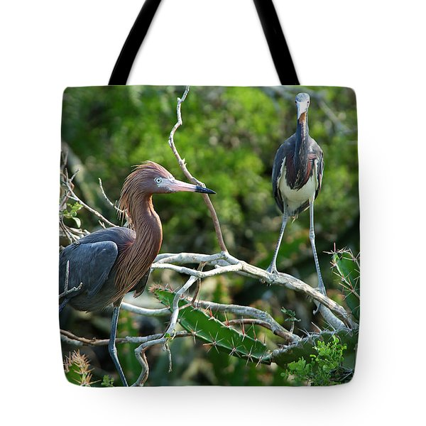 Reddish Egret And Tricolored Heron Tote Bag