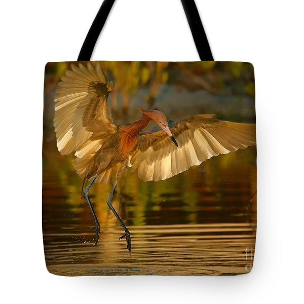 Reddish Egret In Golden Sunlight Tote Bag
