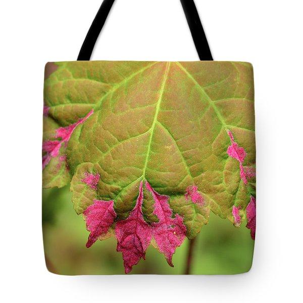 Reddish Pink Erineum Galls, Made Tote Bag