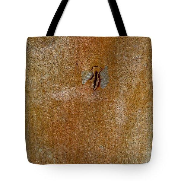 Redgum Tree Tote Bag by Steven Ralser